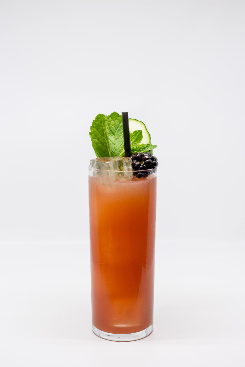 TD_DogCal_SY_Drinks-4